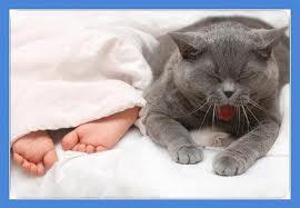 сколько раз должен спать ребёнок